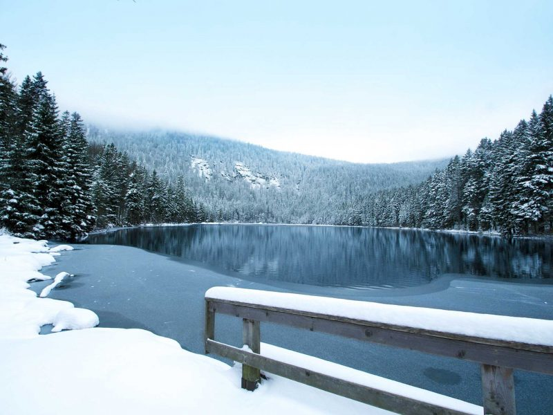 Cozy Winter Days